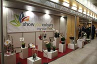 v-rienaecker-ipm-messe-essen-show-your-color-award-1107