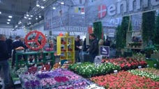 v-rienaecker-ipm-essen-floradania-marketing-044