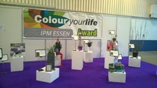 v-rienaecker-ipm-essen-messe-essen-colour-your-life-award-2017-039
