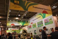 v IPM ESSEN Rienaecker BRILL Substrate 2062