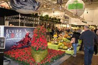 v IPM ESSEN Rienaecker Floradania Marketing 2104