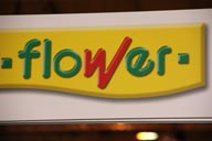 v IPM ESSEN Rienaecker PRODUCTOS FLOWER 2048